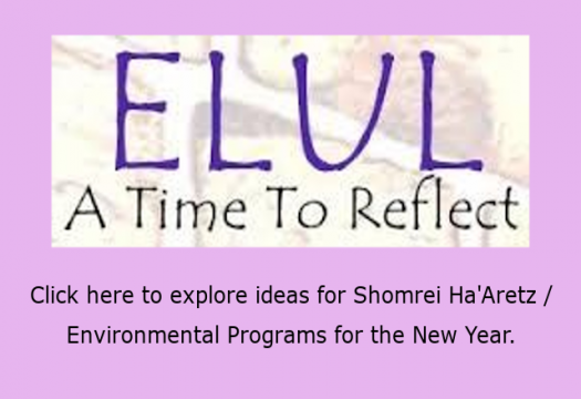 Elul - A Time to Reflect - Shomrei Haartez - Enviromental Programs